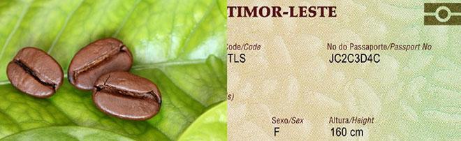 East-Timor-Leste-passaporte-.jpg
