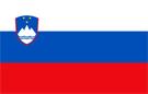 slovenia_flag.jpg